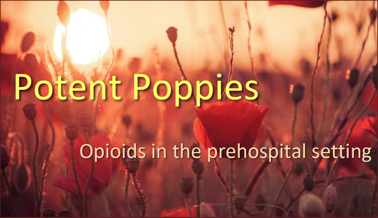 SS for Potent Poppies